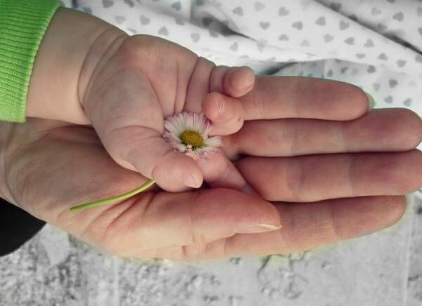 海外の子育ては日本どう違う?子育て支援や子どもへの接し方を紹介