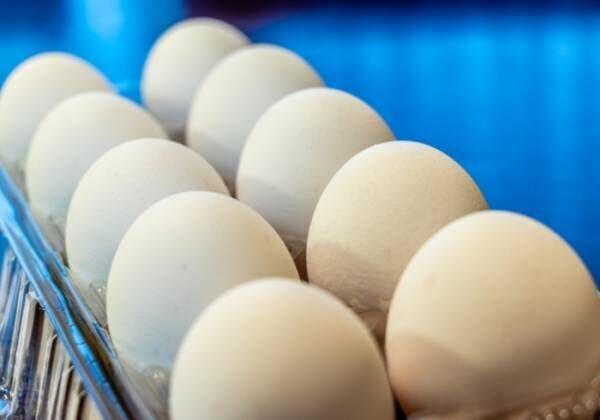 妊婦は生卵による食中毒に気をつけよう!3つの防止ポイントも紹介