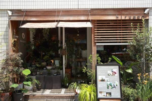 苔玉・盆栽・テラリウム…【京都】ショップで買えるおしゃれな苔アイテム5選!