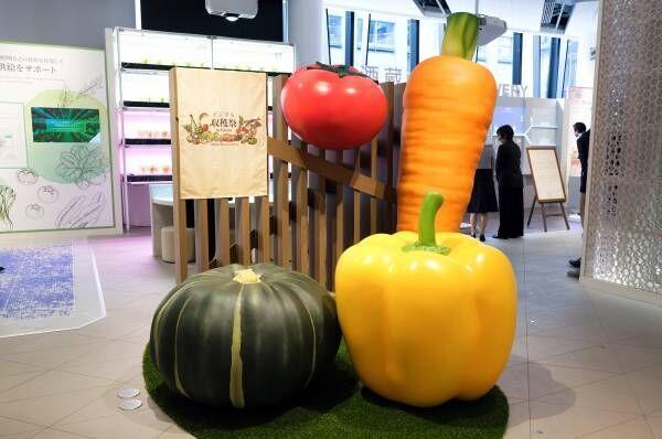 〈METoA Ginza〉でバーチャルな収穫体験で野菜作りを学ぶ『デジタル収穫祭in Ginza』開催中!