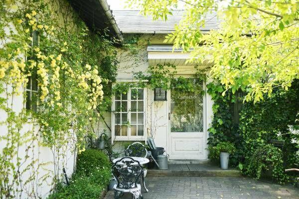 豊かな自然と美しい海で人気。好アクセスな福岡のリゾート地、糸島のおしゃれカフェ4軒。