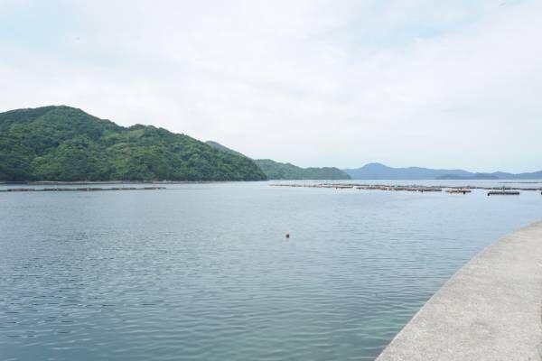 海の幸を生かした名物料理も。愛媛県・宇和島のグルメ旅へ!