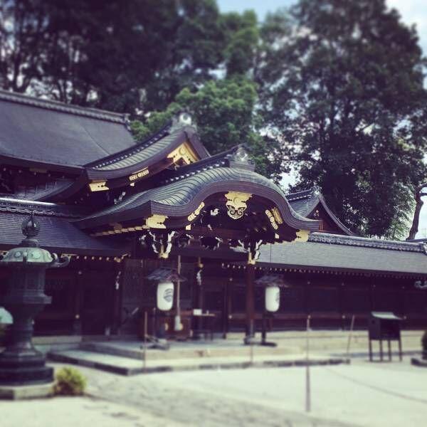 【京都】神社巡りで開運&厄除け!ご利益期待の御朱印や名物和菓子も必見。