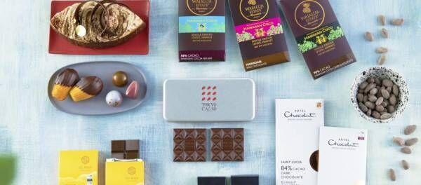 2020年注目チョコ!カカオの栽培から手掛けるトレンドチョコレート「Tree to Bar」6選
