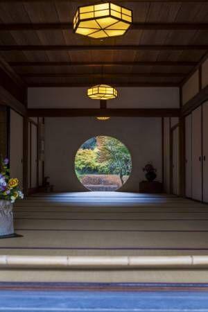 出世開運のパワースポットも!【鎌倉】美しい風景と出合えるおすすめお寺&神社。