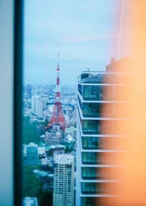 東京タワーが一望できる贅沢ステイ!1日5組限定の〈アンダーズ東京〉ナイトピクニックで過ごす、特別な夜。