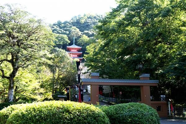 戦国武将のドラマが生まれた土地、岐阜県で史跡と伝統を訪ねる旅。