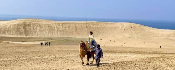 【鳥取砂丘コナン空港発着】山陰グルメに鳥取砂丘、三朝温泉を巡る1泊2日のドライブ旅行。