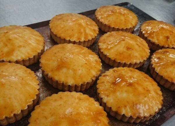 これが豆乳?植物性100%、ヴィーガン「レアチーズケーキ」の風味に驚き!
