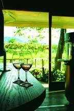 おうち飲みにもぴったり!〈ワイン県やまなし〉で見つけた個性派ワイナリーのおすすめワイン3選