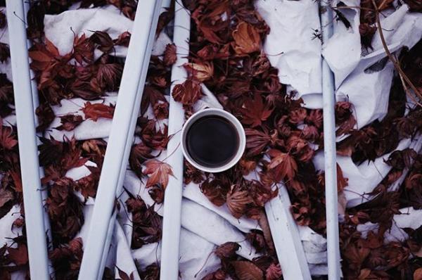 発達障害・15歳のコーヒー屋、岩野響さんが見つけた「ぼくにしかできないこと」【12月21日書籍発売】の画像