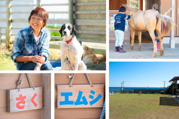 障害がある子どもたちに、アニマルセラピーの機会を!千葉県の放課後等デイサービス・ 南房総白浜デイサポート 菜の花牧場の画像