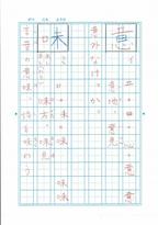 かんしゃくは「助けて」のサイン?漢字が苦手な自閉症長男が変わった秘密は、あの人気ドリルと手作り教材