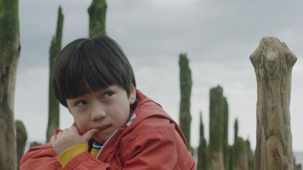 世界的ベストセラーついに映画化!自閉症のある人が見てる世界とは?『僕が跳びはねる理由』映画化によせて――原作者、東田直樹さんインタビューの画像