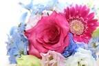 【七曜星風水】恋のツボ!「金星のラブ・パワー」で素敵なデートを実現しよう!