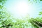 【七曜星風水】〈木星パワー〉でチャンスを広げて大活躍しよう!