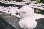 東北人の美肌は冬のおかげ?!寒い季節だからこそ美肌になるポイント