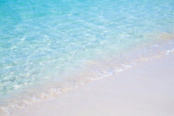 楽しめるメニューが盛りだくさん!逗子海水浴場の魅力
