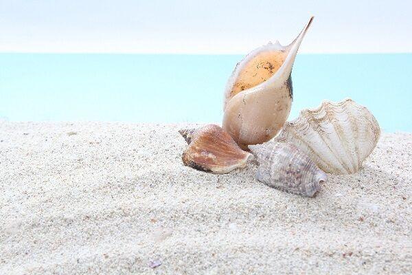 夏といえば海!ロマンチックデートが楽しめる「御宿中央海水浴場」