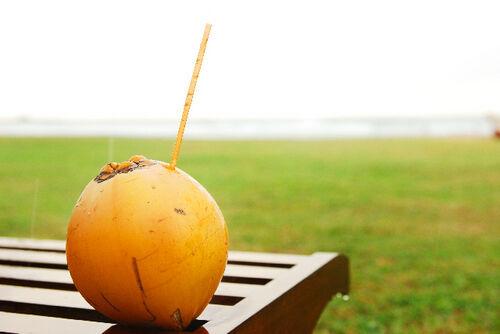 海外セレブ御用達「ココナッツオイル」でキレイになる方法