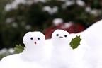 冬にかかりやすい「膀胱炎」を予防・撃退する食品  8選