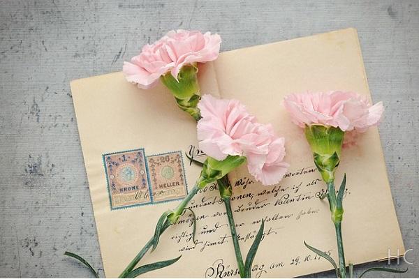 本の上に置かれた花