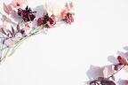12星座別*今週の運勢&恋のラッキーアイテム(4/1~7)