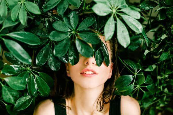 葉っぱに隠れる女性の画像