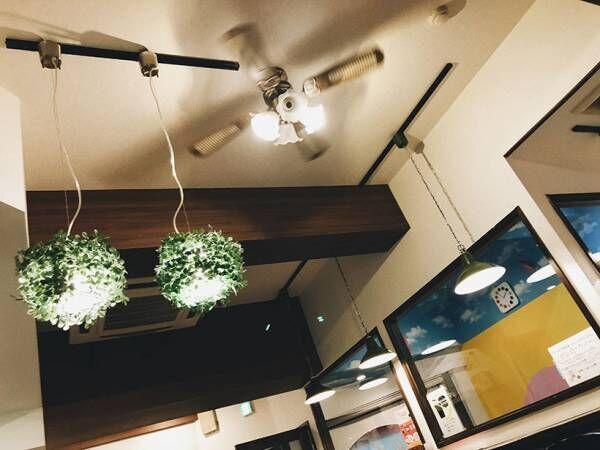 福岡の子どもが喜ぶイルミネーション&身体にやさしい グルテンフリーのカフェ