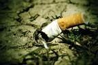 子どもがタバコを食べちゃった…!? 危険な「拾い食い」予防と万が一の処置