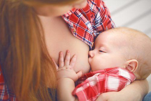 【8月1日は世界母乳の日】生後すぐの授乳で生存率3倍!? 知っておきたい「母乳110番」と豆知識