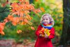 紅葉シーズンに注意!乳幼児が「かぶれを起こしやすい植物」って?