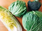 野菜高騰中!長〜くおいしく食べる「冷蔵保存のスゴ技」4選