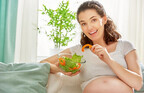 プレママ必見!専門家が教える「葉酸の多い冬の野菜」ベスト5