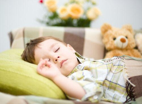 勉強後「1時間以内に昼寝する」と学習力高まるってホント!?