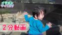 親子で大興奮!赤ちゃん連れでも楽しめる「動物園」の魅力 #48