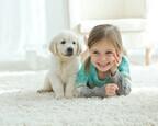1人っ子+ペットとの生活「子どもに与える影響」2つ