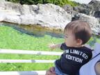 【10ヶ月】よちよち歩きベビーとお出かけ♪東京・神奈川のおすすめスポット5選