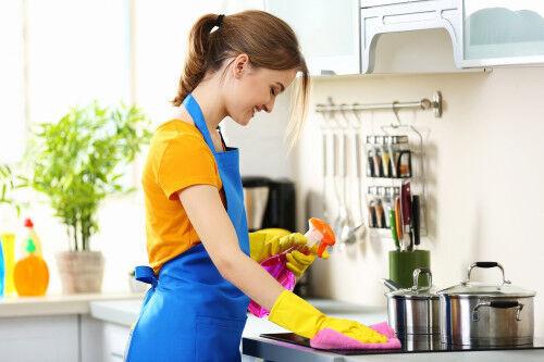 ダイソーだけで「キッチン」をピカピカに!【年末前の小掃除テク】