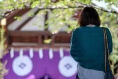 戌の日の安産祈願におすすめの神社は?いつ行く?【2019-2020戌の日カレンダー】