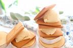 アイスって賞味期限あるの?子どもに安心!「手作り無添加アイスクリーム」レシピ