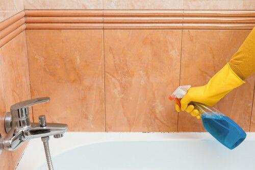 「お風呂・シンク下・洗濯機」のカビ対策は?おすすめグッズ5選
