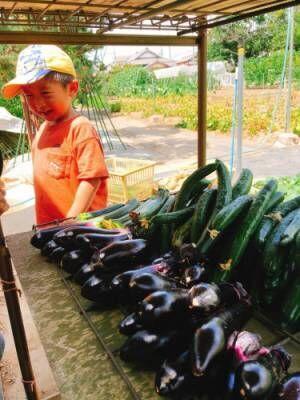 夏野菜で作る!子どもが喜ぶ「じゃが餅」レシピ【野菜嫌いの幼児食】#5