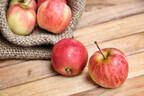 「りんごのコンポート」で離乳食&大人メニューレシピ