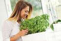 オシャレで簡単&節約♪お家で手軽に「家庭菜園できる野菜」3選