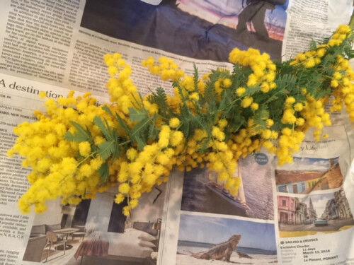 3月8日は「ミモザの日」!家に飾りたくなる簡単アレンジメント♡