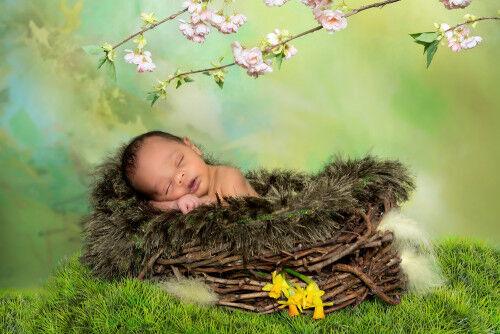 4月生まれの子につけたい男の子・女の子の名前まとめ