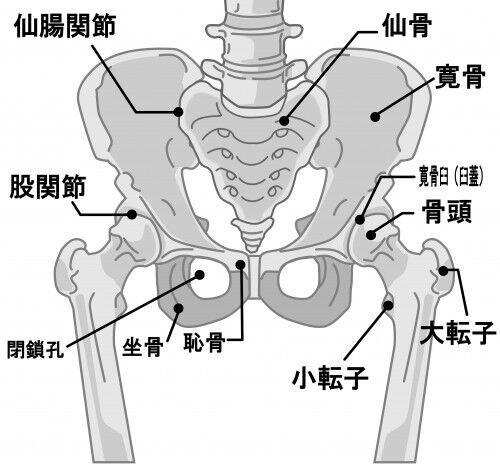 【妊娠後期】デスクでのNG姿勢3つ&腰痛予防の「理想的な座り方」