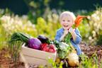 緑黄色野菜×秋食材で作る!「夏の疲れに打ち勝つ」栄養満点レシピ2つ