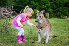 「オーストラリアと日本の保育制度の違いって?」保育士の海外ホームステイ日記 #02